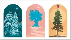 Trees for Rivera Funeral Home in Taos, New Mexico